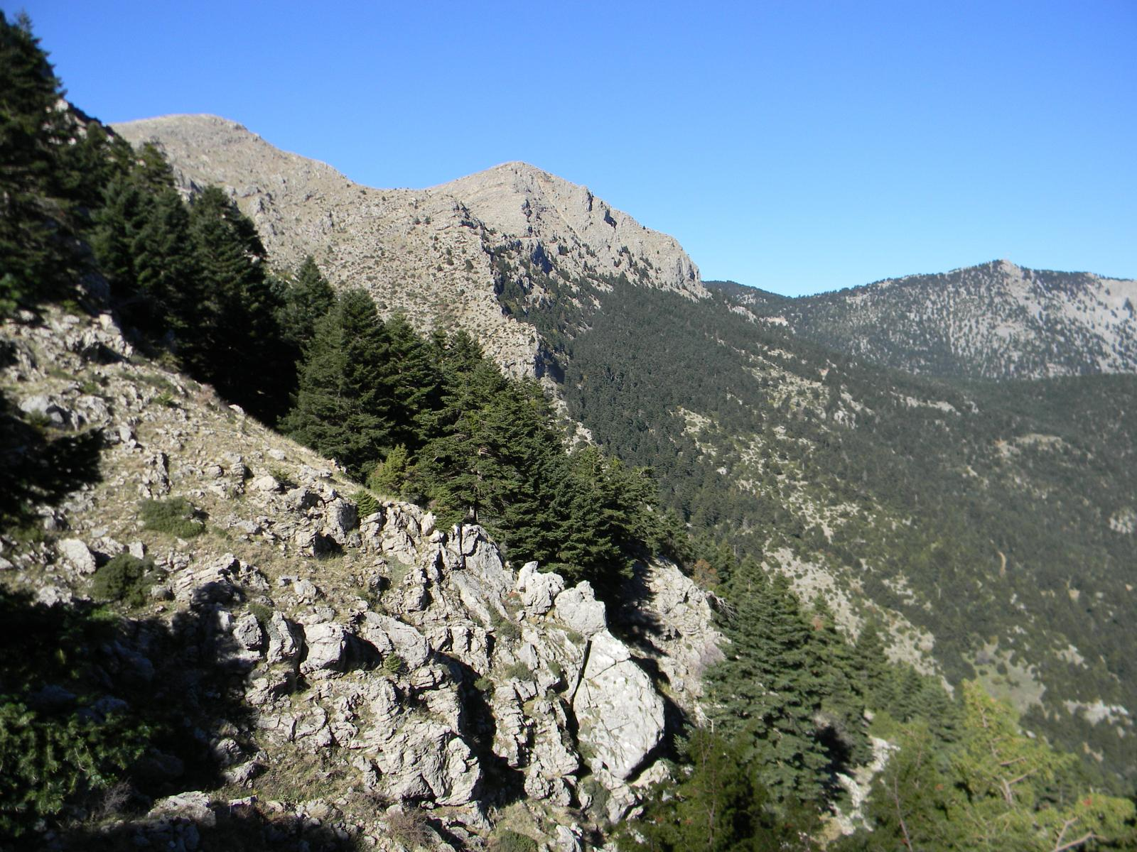 Mount Oligyrtos