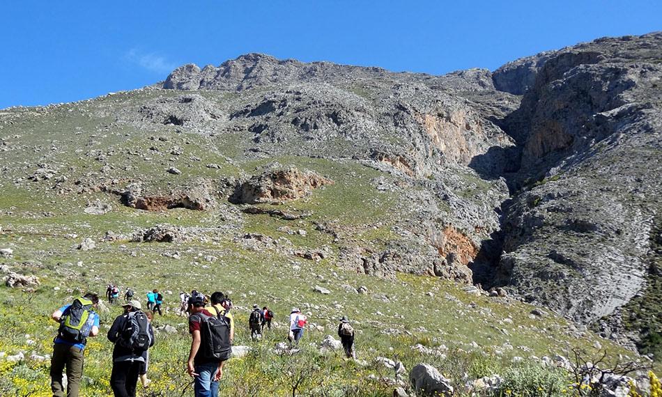 Mount Kedros