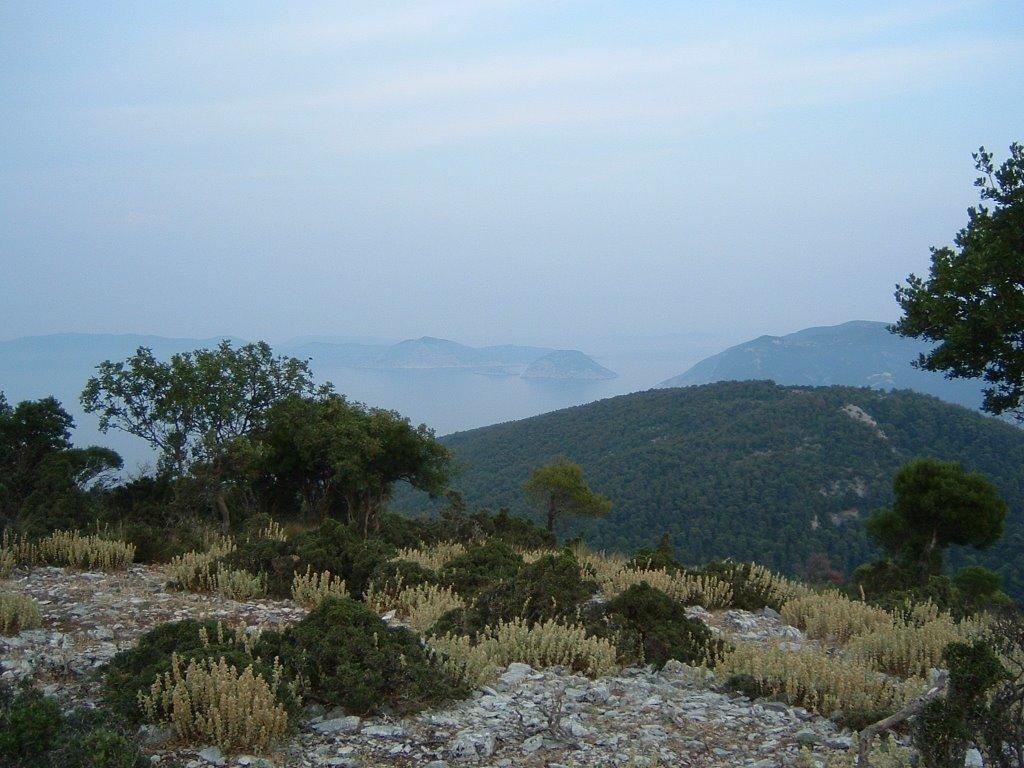 Mount Delfi